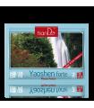 Parches Desintoxicantes Para Limpiar los Riñones Yaoshen Forte . 2/u